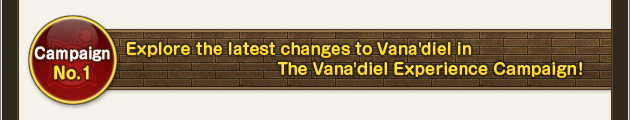 "Campaign No. 1 Explore the latest changes to Vana'diel in the ""The Vana'diel Experience Campaign""!"